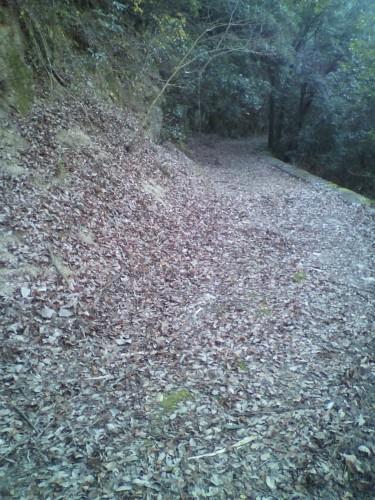作業前の山道