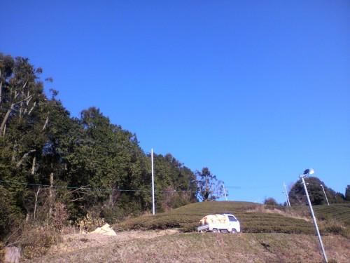 落ち葉は軽トラで各茶園に運びます