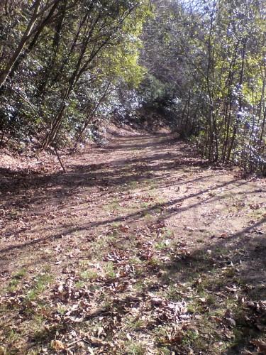 作業後の山道